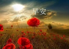 最温暖的早安心语 经典而温馨的早安心语