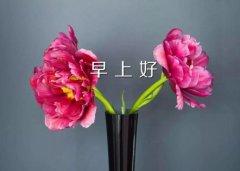 配花的简短文字 朋友圈发花朵配文字