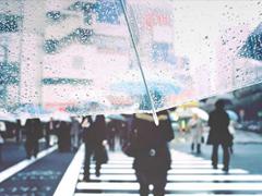 单身一个人的伤感句子大全 心情低落可以发朋友圈的伤感句子